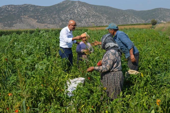 AKP'li Tarım ve Orman Bakanları'nın İzmir'e yaptığı ziyaretler