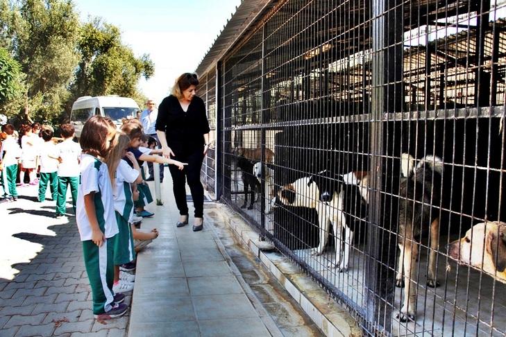 Hayvan Barınağı'na Ziyaret