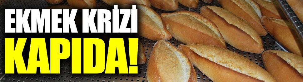 Ekmek krizi kapıda!