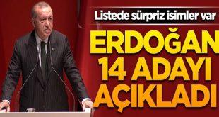 Erdoğan 14 adayı daha açıkladı !