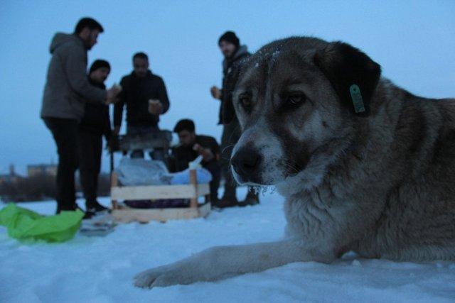 Ardahan'da Donmuş Nehir Üzerinde Mangal Yaptılar