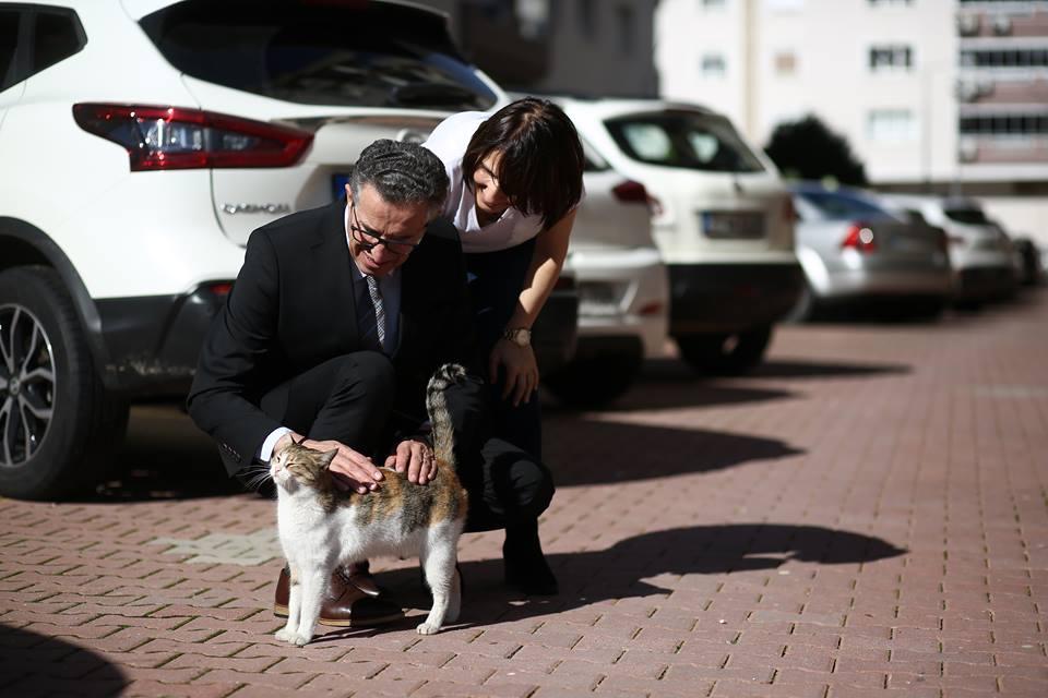 """Halil ARDA'nın yaşadığı Koru Sitesi """" Sokak Hayvanları Dostu"""""""