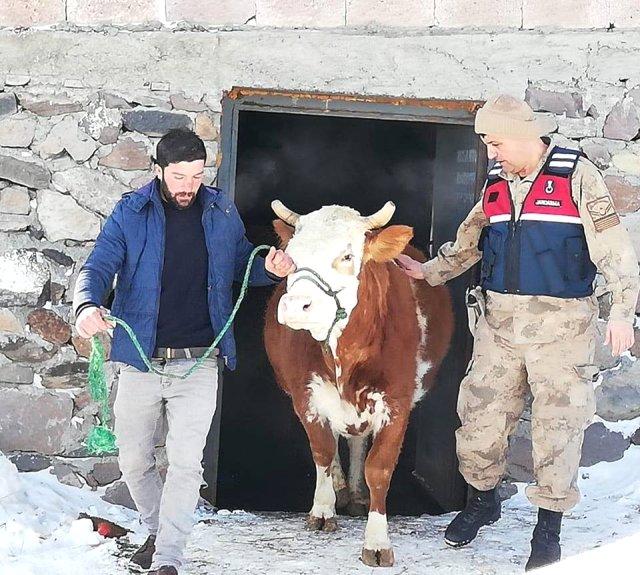 Ardahan'daKardaki Toynak İzleri Hırsızlık Zanlısını Yakalattı