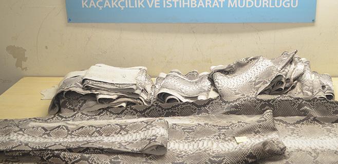 Atatürk Havalimanı'nda 'yılan derisi' operasyonu