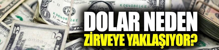 Dolar neden zirveye yaklaşıyor