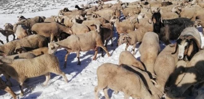Mayıs ayında beyaza büründü Antalya'da yaylalar