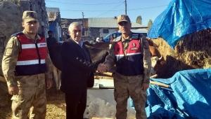 Ardahan'da Hayvan çalınması olayı ile ilgili Soruşturma başlatıldı