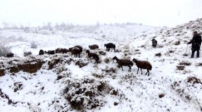 Ardahan, Erzurum, Kars ve Ağrı için yoğun kar yağışı bekleniyor