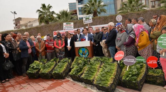 """Başkan Aksoy: """"Ispanak üreticisine destek vereceğiz"""""""