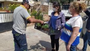 """Buca'da balkon tarımı başladı: """"Evde kal, evde üret"""