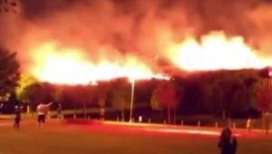 Aşık Veysel Rekreasyon Alanı'nda korkutan yangın