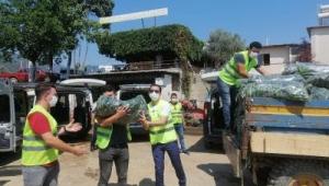 Biz Varız dayanışması sürüyor 48 ton taze salatalık dağıtıldı