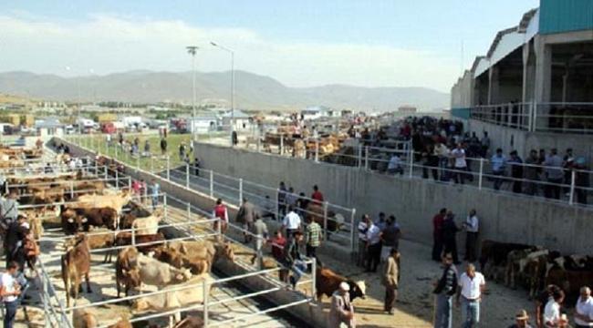 Ardahan'da büyük bir alanda karantina ilan edilmesi çiftçileri ve hayvancılığı bitirme noktasına getirdi