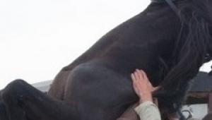 Attan düşen adam hayatını kaybetti
