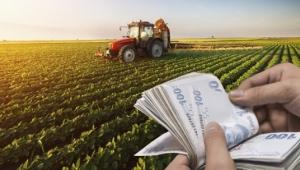 2020 yılında Çiftçi Kayıt Sistemi'ne (ÇKS) dahil olan çiftçilere bu yıl için ödenecek tarımsal destekler belli oldu.