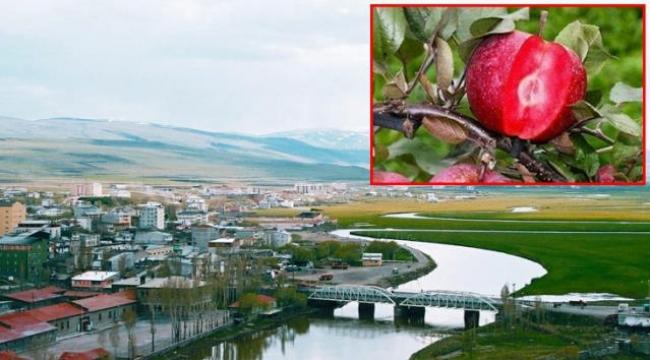 Ardahan Yunan gazetesinde skandal haber: 'Doğu Pontus' şehri diye tanıttılar