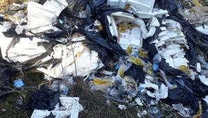 Kent merkezine onlarca metre mesafedeki mesirelik alanı atıklarla doldurdular, Başkan isyan etti.