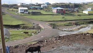 Ardahan'ıda karantina alınan köy sayısı 5'e yükseldi