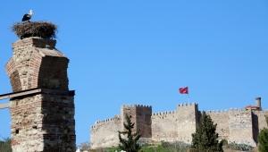 Baharı Müjdeleyen Leylekler Efes Selçuk Semalarında