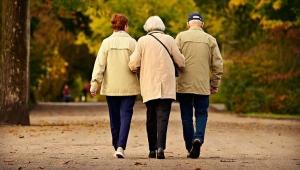 Emekliler harekete geçti! Ücretsiz olsun