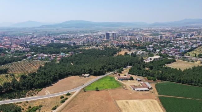 Torbalı'da vatandaşlar ormanı temizleyecek