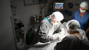 Covid-19 etkisi: Dünya çapında hayat kurtaran organ nakli ameliyatları büyük ölçüde düştü
