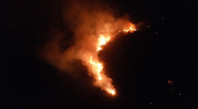 Yangın Akbük'e sıçramadan kontrol altına alındı