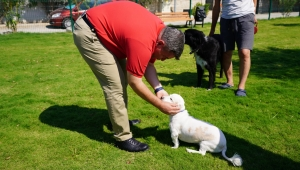 Başkan Oran'dan hayvanseverlere müjde;